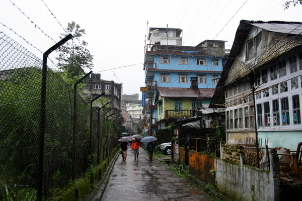 Darjeeling   living in clouds