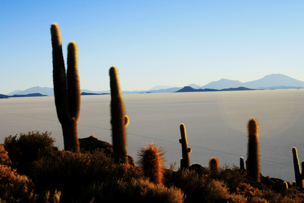 600 cis Bolivia –  a visual journey