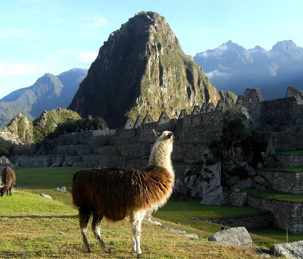 travelli Machu Picchu, Peru   Visiting One of the New Seven World Wonders
