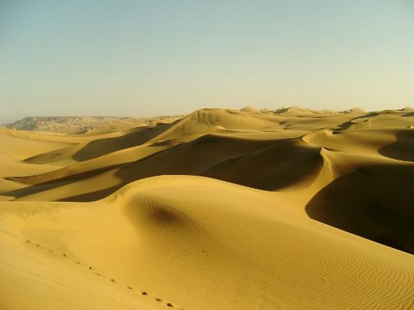 huaca15 Sandboarding in the Desert
