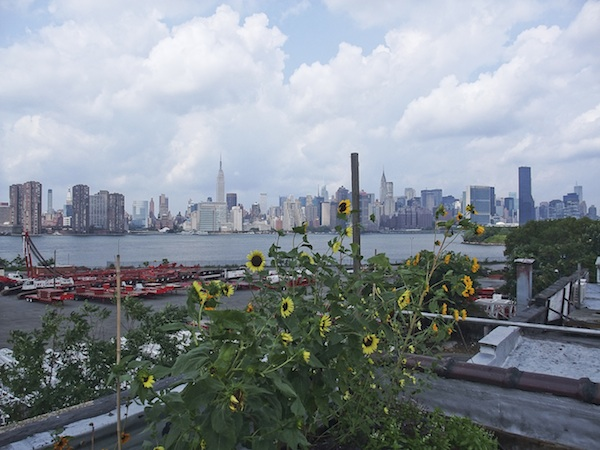 Greenpoint Eagle Rooftop 1 5 reasons to go to... Greenpoint