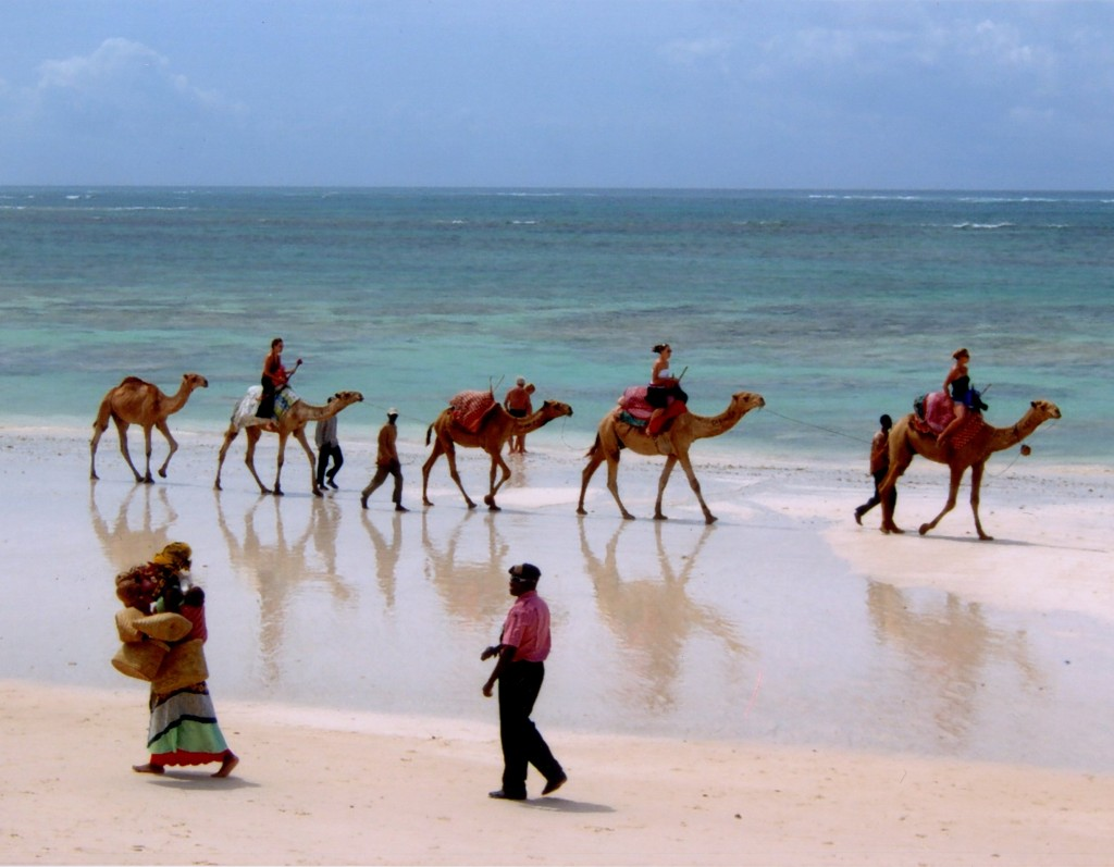 Diani beach camels 1024x797 Experiencing Kenya