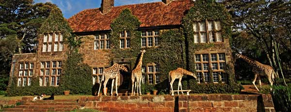 giraffe manor surrounding3 The Giraffe Manor in Kenya