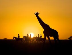 Experiencing Kenya