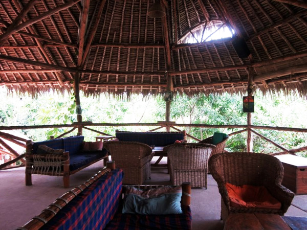 hostel Monkey business on the Kenyan coast