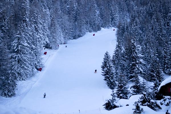 trav anzere pist in the forest1 Winter Holidays in Anzère, Switzerland