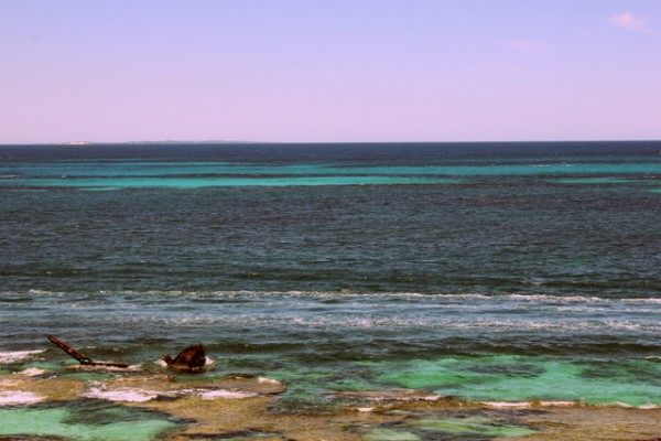 IMG 0432 600x400 A day on Rottnest Island, Australia