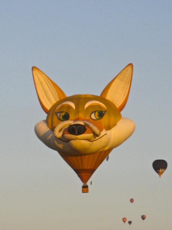 trav balloon010 Europes largest Hot Air Balloon Festival