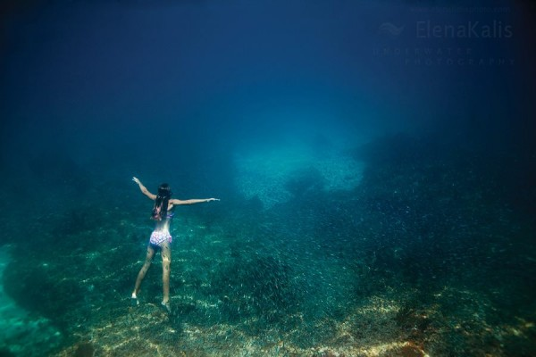 elena1 600x400 Underwater worlds by Elena Kalis