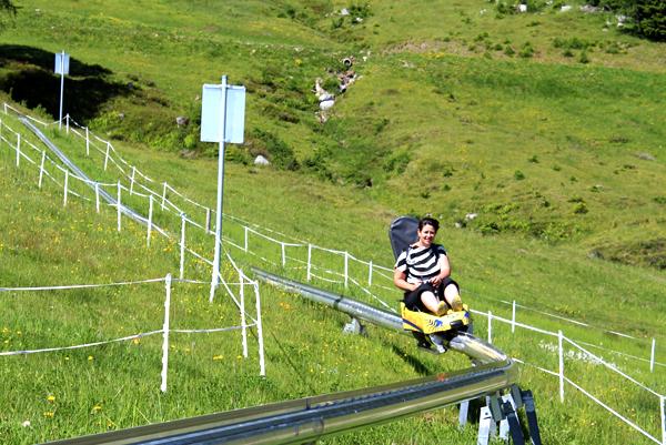 trav sommer rodelbahn nassfeld 7 things to do in Nassfeld, Austria