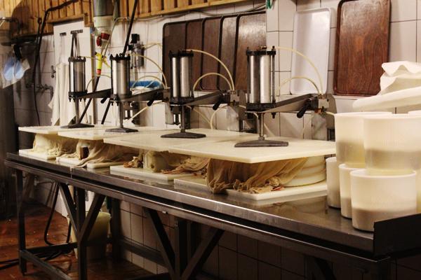 travs cheese Kaernten 7 things to do in Nassfeld, Austria