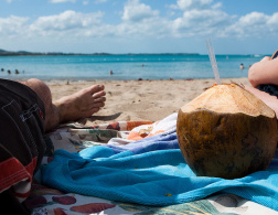 50 reasons why coconuts are amazing
