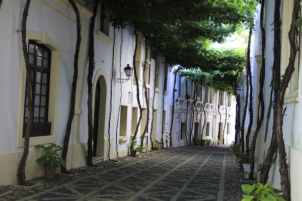 andalusia 09161 Barceló Sancti Petri   An Andalusian Getaway