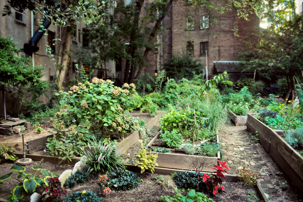 Community Garden in New York City