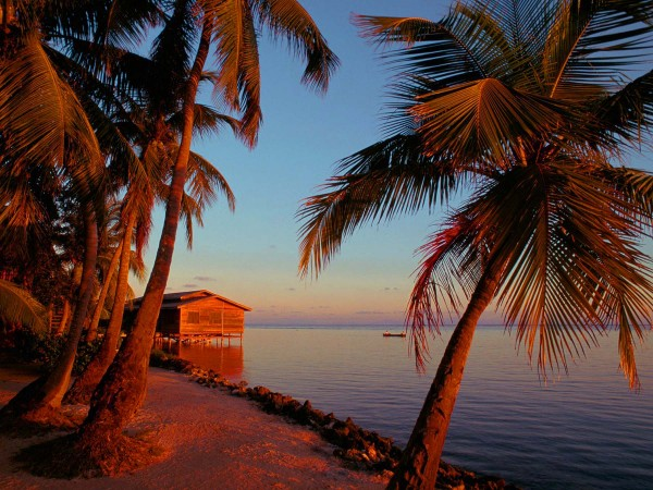 Honduras islands and beach wallpaper 600x450 Seaside perfection in Tela, Honduras