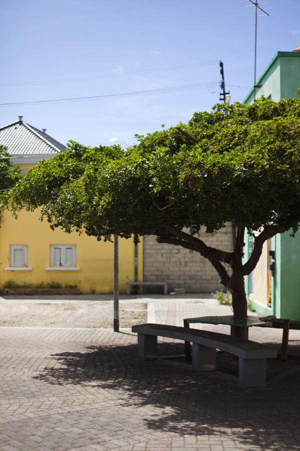 MG 7180 Colors of Curaçao