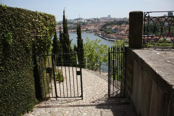 DPP 1121 600x400 Discovering Porto