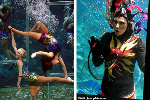 Mermaids in Florida Weeki Wachee Weeki Wachee Mermaids