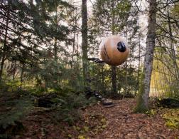 Sleeping in trees - Free Spirit Spheres