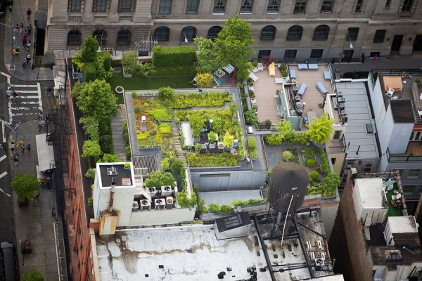 MacLean01 600x400 Up on the Roof: New Yorks Skyline Spaces