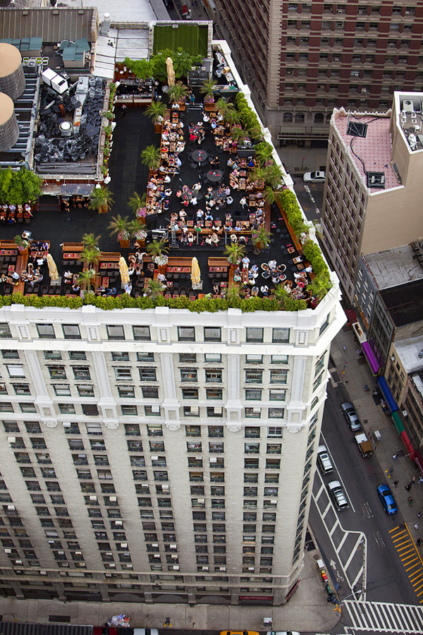 MacLean03 Up on the Roof: New Yorks Skyline Spaces