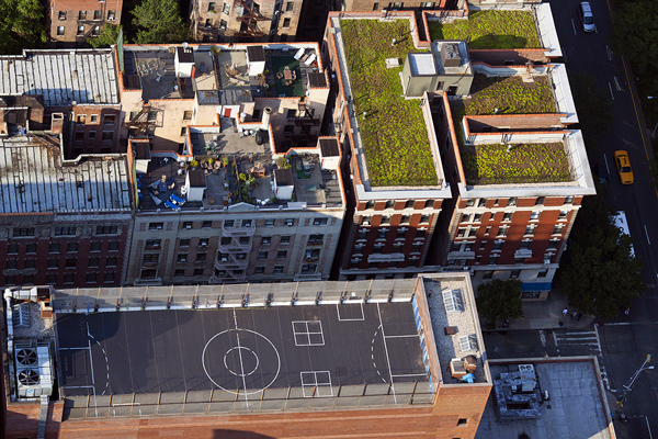 MacLean07 Up on the Roof: New Yorks Skyline Spaces