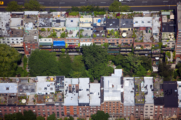 MacLean08 Up on the Roof: New Yorks Skyline Spaces