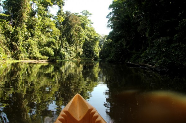 IMG 0917 600x399 Finding paradise at Tortuguero National Park