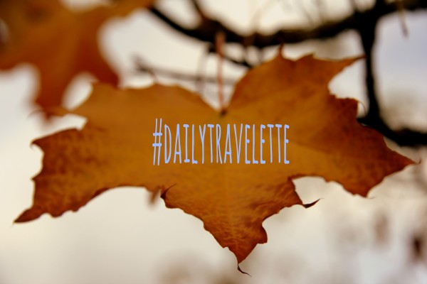 fall edition dailytravelette