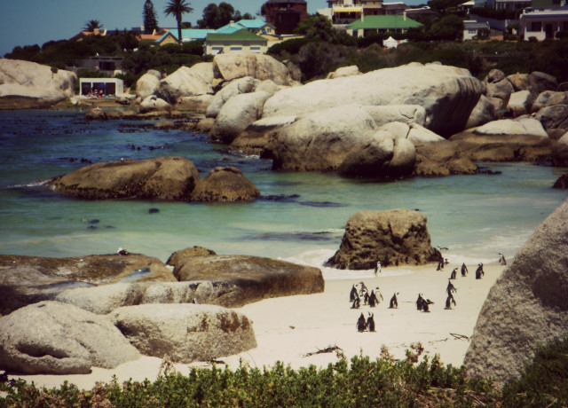 30 reasons to spend winter in Cape Town
