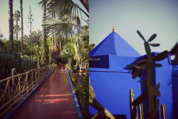 Jardin Majorelle 3