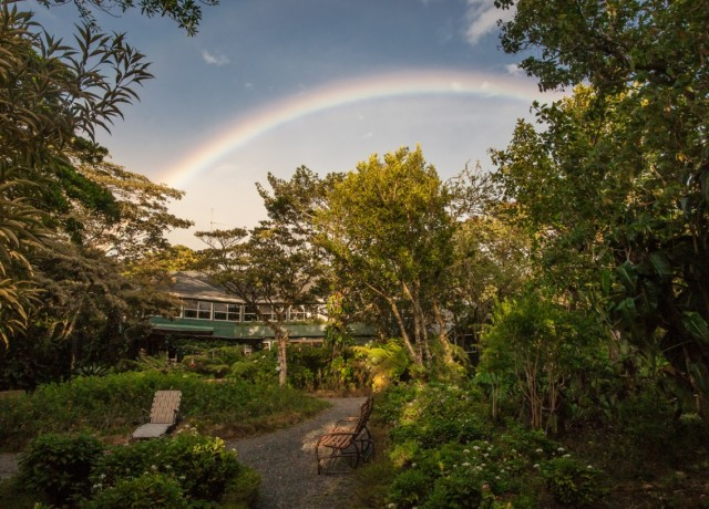An Unexpected Journey: A Weekend in Monteverde Cloudforest