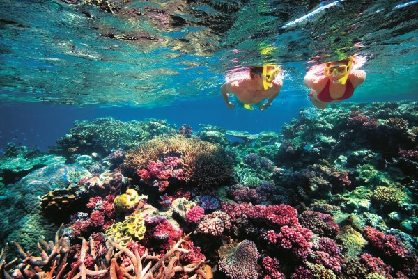 Belize-Barrier-Reef11