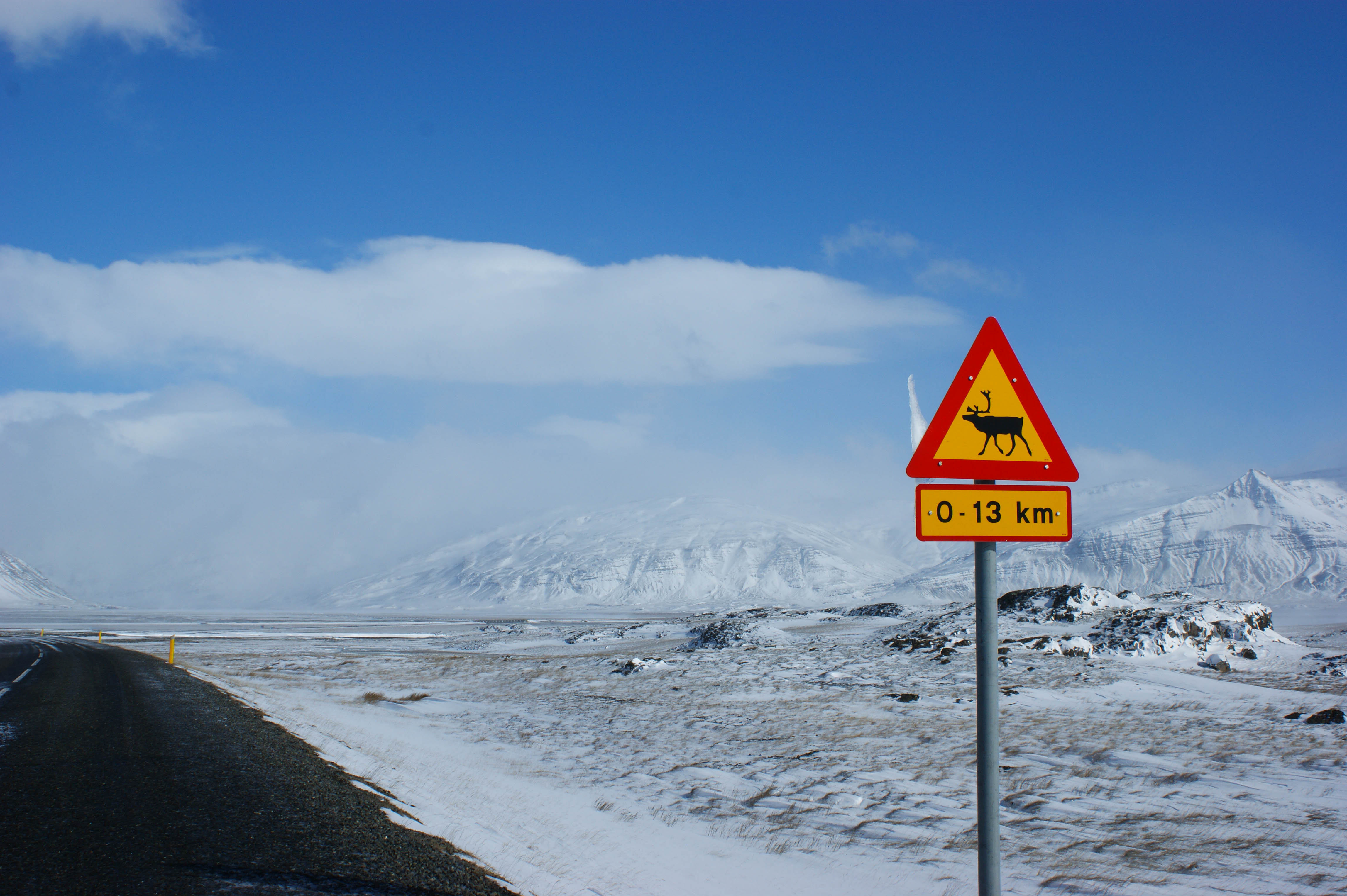 roadtrip iceland road signs