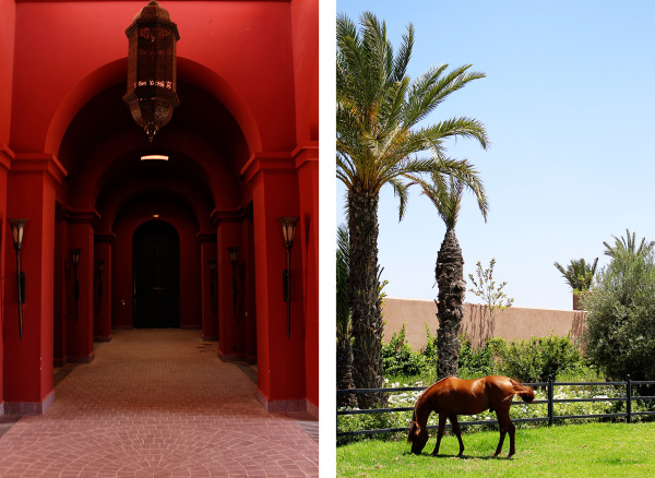 Horses at Selman 600x438 Hotels We Love: The Selman, Marrakech