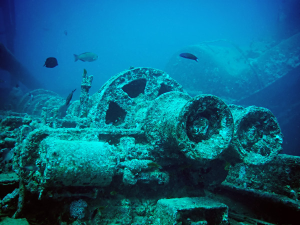 wikipedia wreck 600x450 Diving in the Red Sea, Egypt
