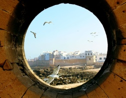 About Camels & Kitesurfers – Memories of Essaouira.