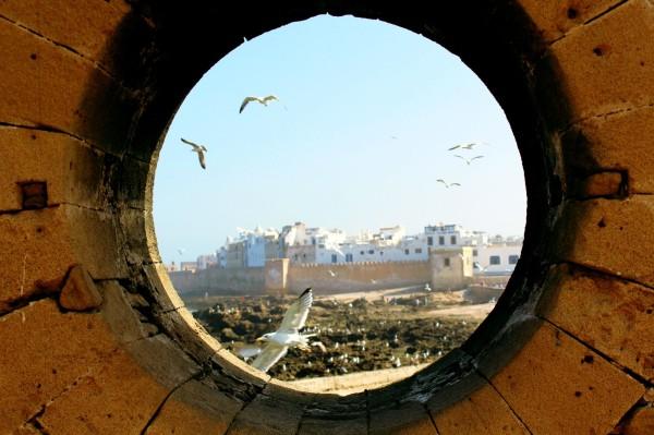 Essaouira Camels & Kitesurfers Annika Ziehen - 12