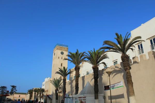 Essaouira Camels & Kitesurfers Annika Ziehen - 20