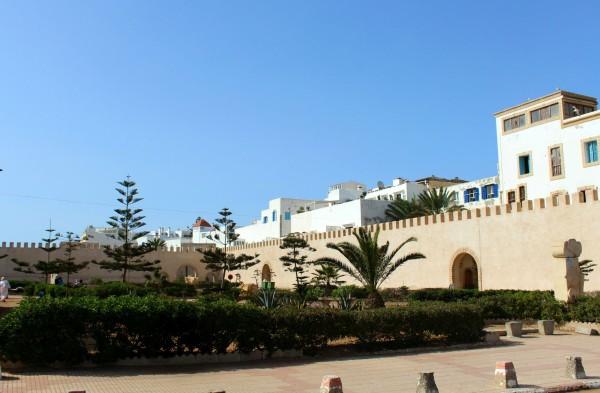 Essaouira Camels & Kitesurfers Annika Ziehen - 21