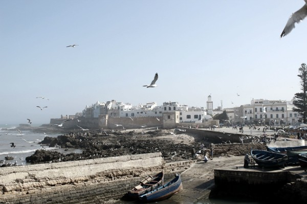 Essaouira Camels & Kitesurfers Annika Ziehen - 25