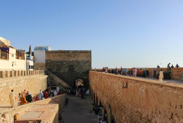 Essaouira Camels & Kitesurfers Annika Ziehen - 27