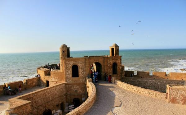 Essaouira Camels & Kitesurfers Annika Ziehen - 29