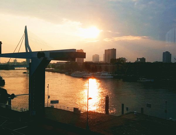 Sunset view Hotel Pincoffs Rotterdam - Frances M Thompson
