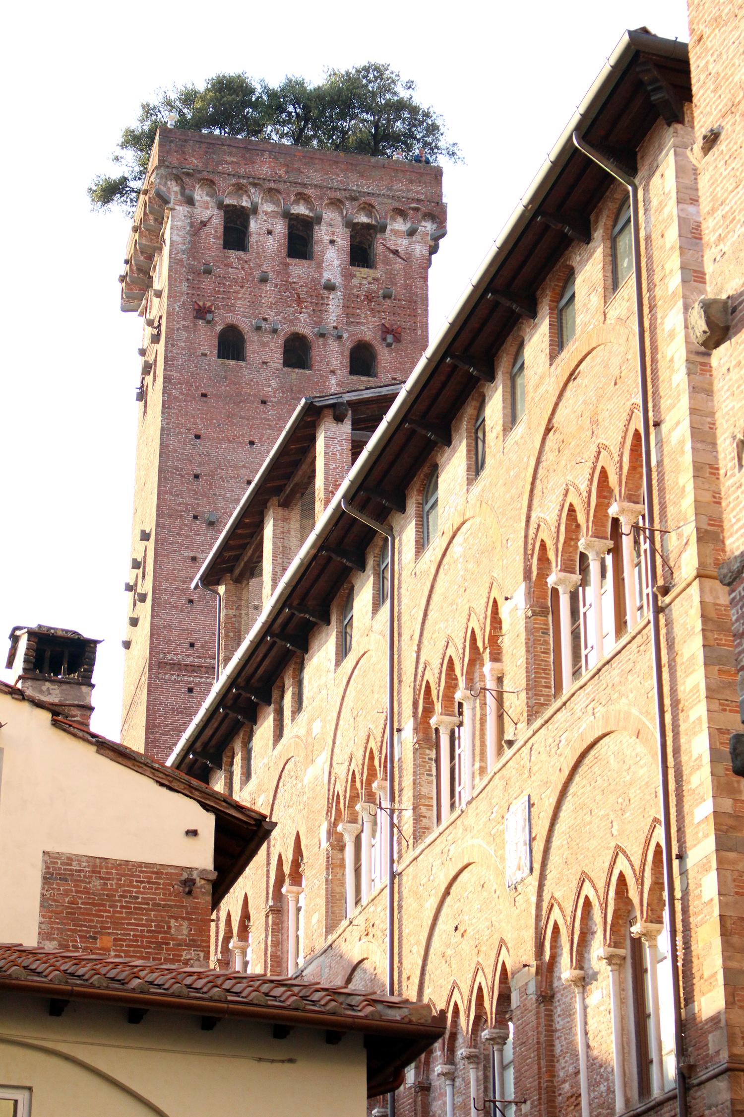 Torre Guingi in Lucca - Frances M Thompson