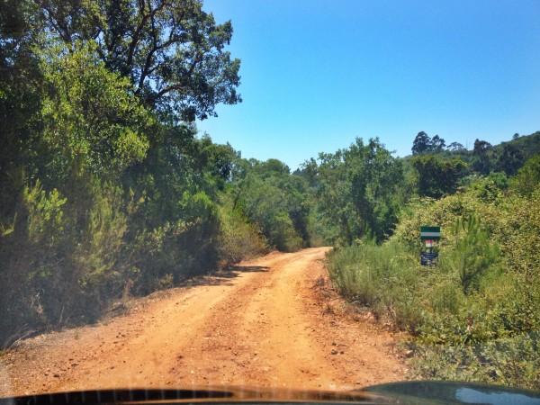 sophie saint alentejo coast portugal road trip