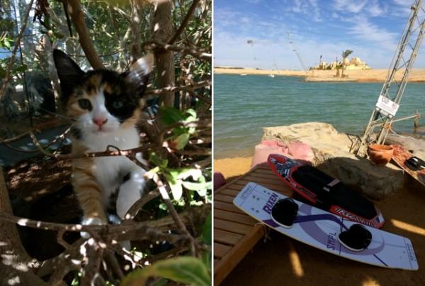 Annika Ziehen_Travelettes_El Gouna_Egypt_Red Sea