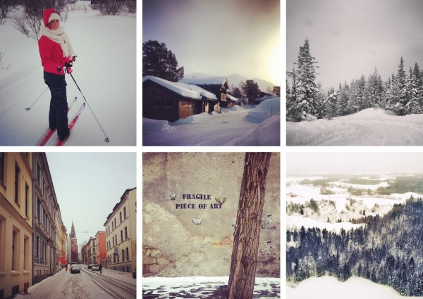 travelettes_instagram_recap_january_katja_skiing_norway
