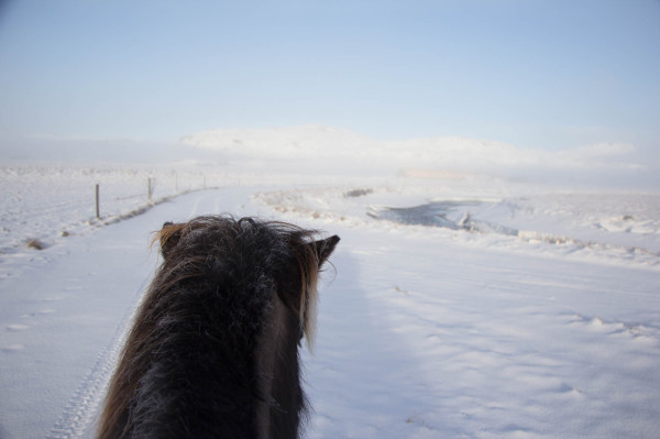 Winter Things to do in Iceland 7