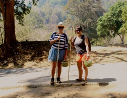 Trekking in Chiang Mai - of blue toes and serenity